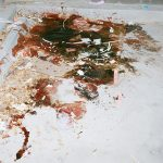 Blood at scene of Duran Bailey's death
